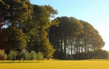 Golf course Golf d'Arnouville