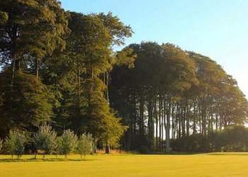 Golf d'Arnouville