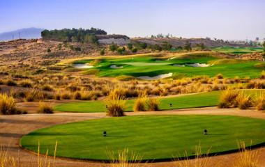 Parcours du golf Alhama Signature Golf