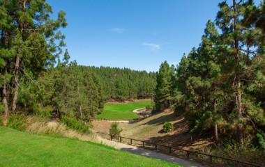 Golf course Chaparral Golf Club