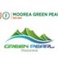 Logo UGOLF Moorea Green Pearl
